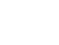 THE WU PROJECT, barefoot chinese medicine nonprofit